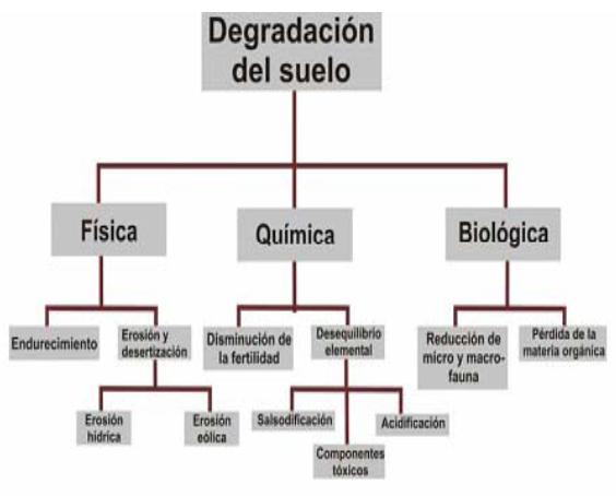 degradacion-de-suelo
